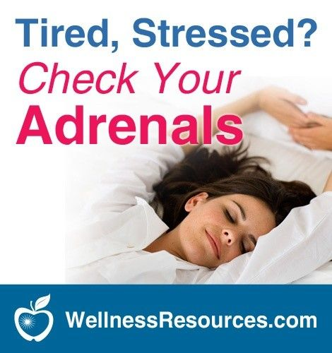 Five Nutrients That Support Adrenal Health