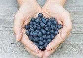 Berries are a Brain Super Food