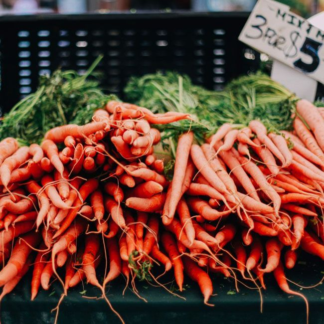Vitamin A – An Essential Nutrient for Immune, Respiratory, and Gut Health