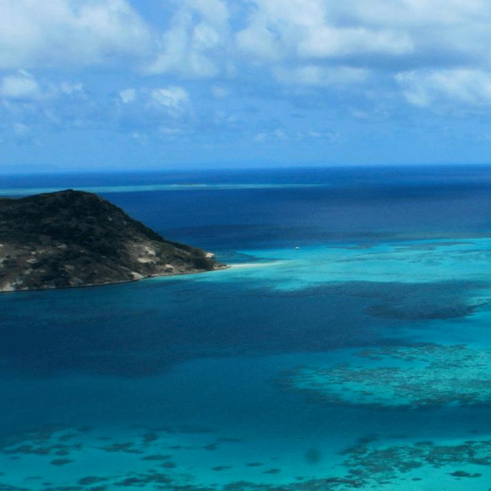 The Unique Properties of Coral Calcium
