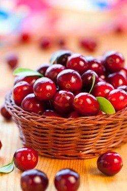 Astonishing Benefits of Cranberries
