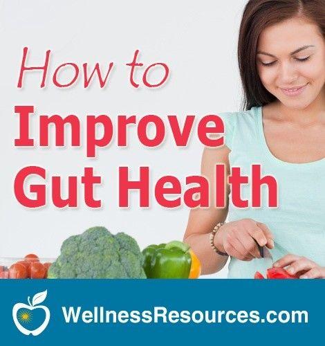 Improve Gut Health and Immunity with Probiotics
