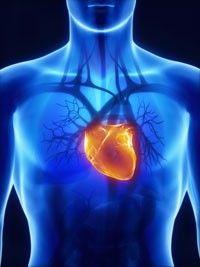 Blood Sugar Affects Heart Rhythm