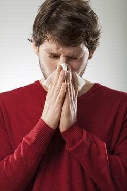 Quercetin as Anti-Flu Support