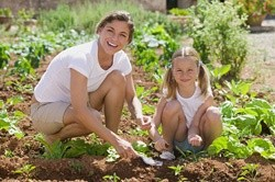 GMOs, Roundup, and Sunscreen Linked with Diminished Brain Resiliency