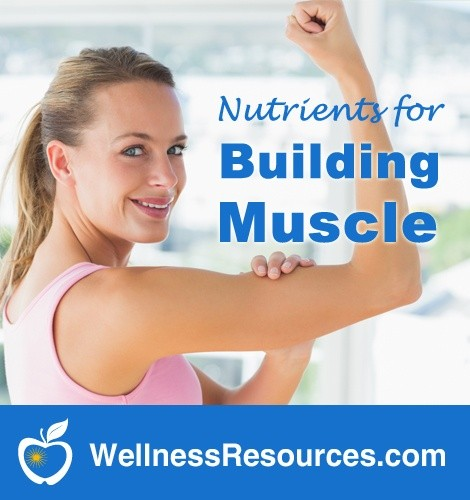 Keep Up That Muscle! Best Nutrients to Build and Protect Muscle Strength