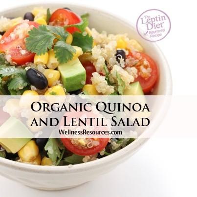 Organic Quinoa and Lentil Salad