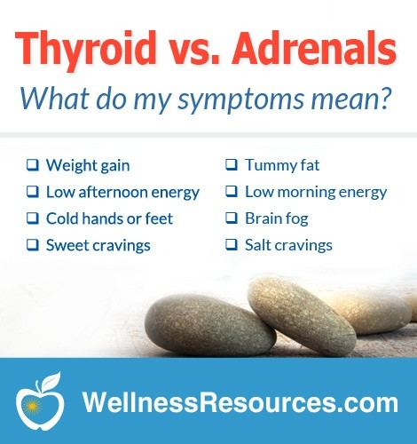 Low Thyroid vs. Adrenal Fatigue